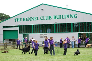 Canine Christmas Carol Service at The Kennel Club
